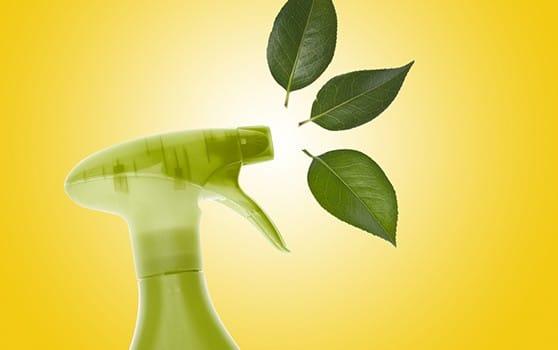 La propreté écologique