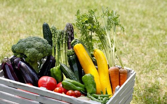 Comment conserver vos fruits et légumes de saison plus longtemps